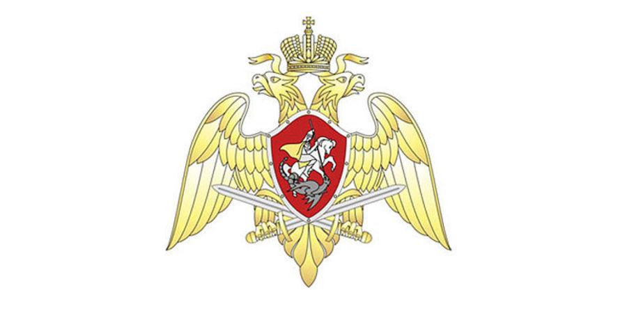 Росгвардия вознаградит спецназовцев, освободивших 13-летнюю заложницу вОмске