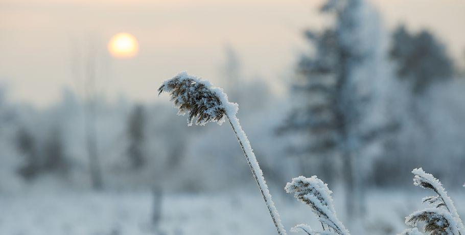 Аномальные морозы ожидаются вОмской области