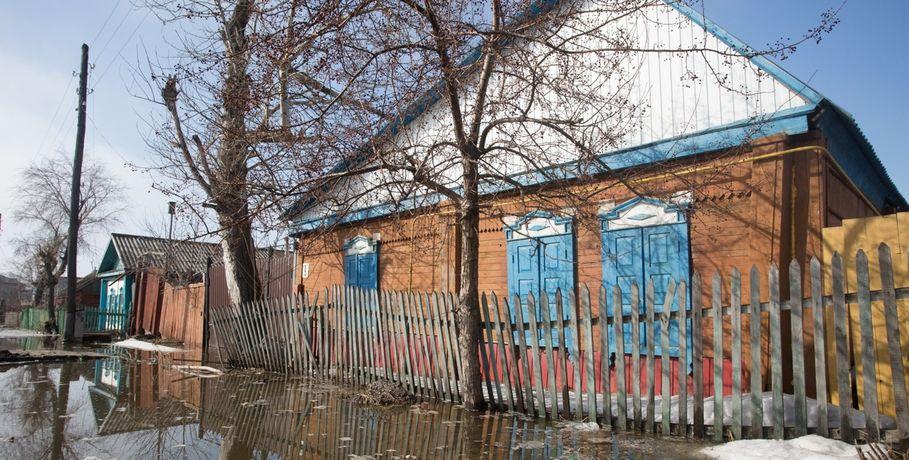 20-летнему омскому студенту грозит срок заразведение конопли в личном доме