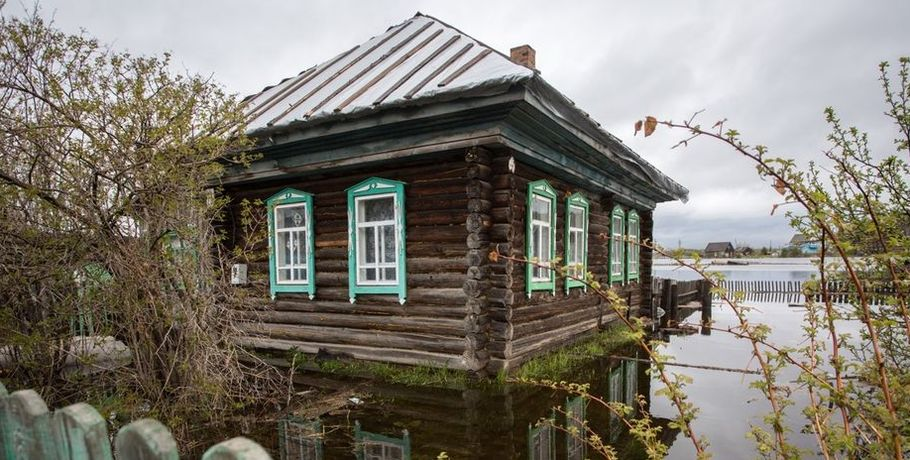 Гражданин Омской области отыскал наогороде медведя