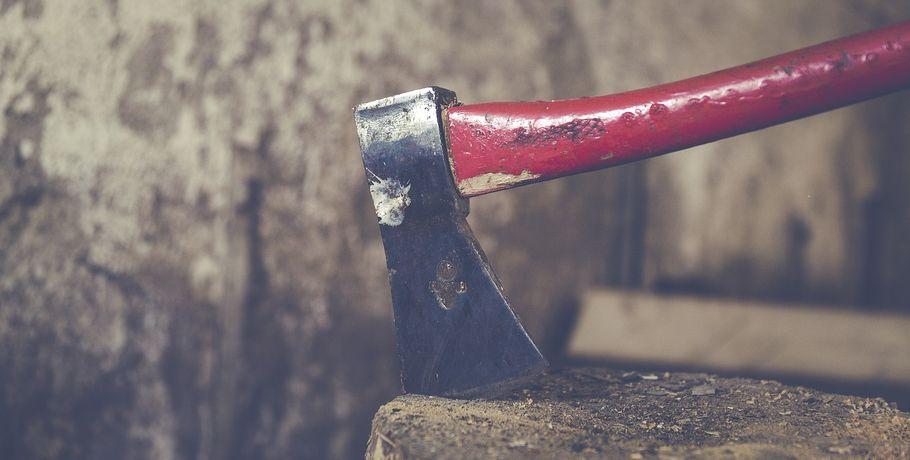 Нетрезвый омич избил рукояткой топора 8-летнего брата