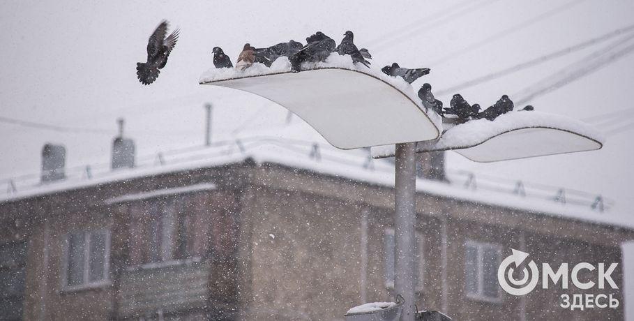 Омичей ижителей области ждут морозные выходные