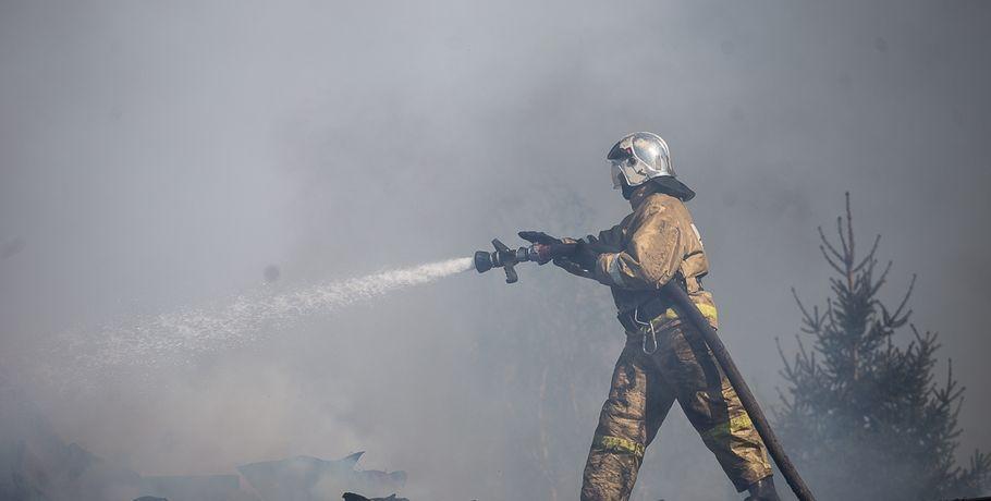 Завыходные вДФО устранено илокализовано 32 лесных пожара