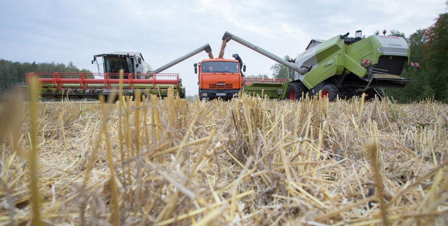 Омским аграриям возвратят 237 млн руб. заподорожавшее перед посевной горючее