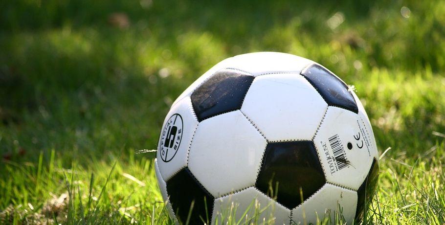 Избран глава омской федерации футбола #Спорт #Новости