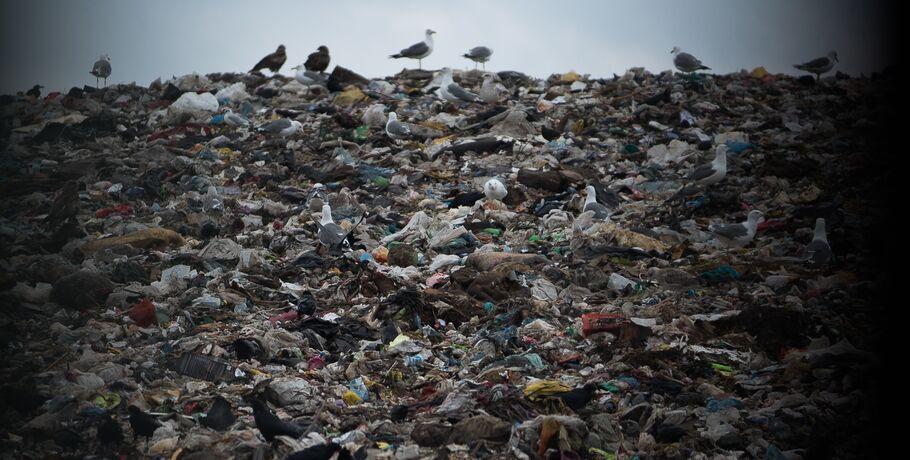 Счётная палата назвала регионы, где на полигонах заканчивается место для мусора