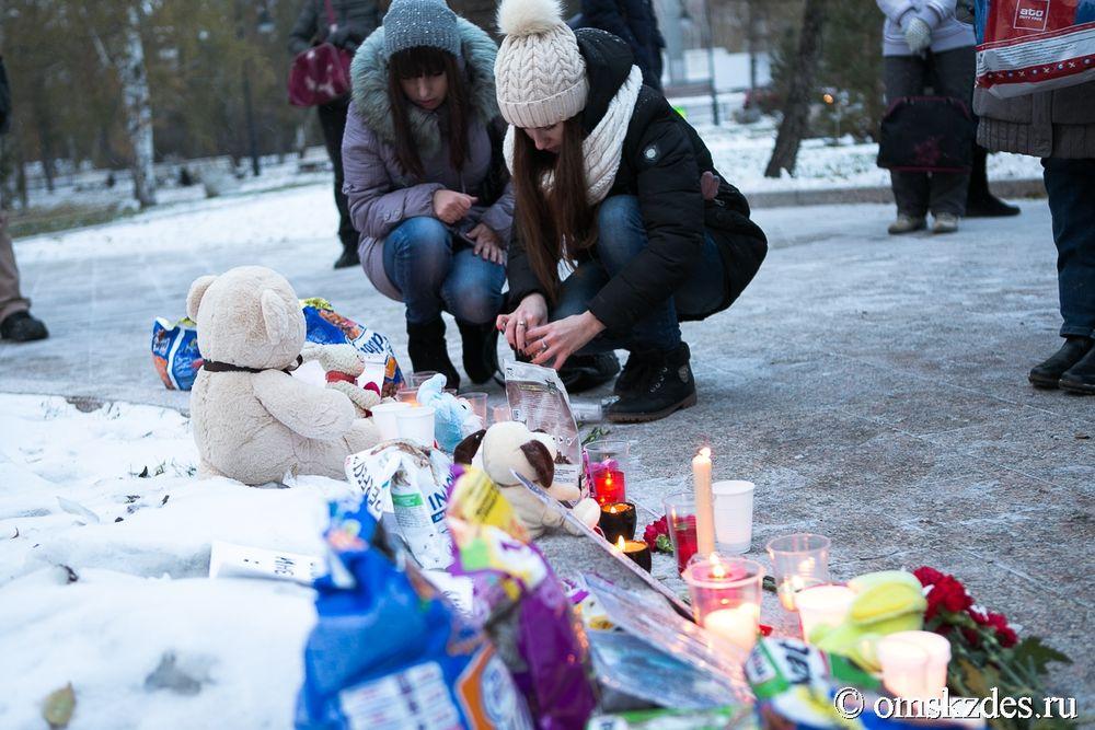 Омичи организовали мемориал впамять обубитых хабаровских кошках исобаках